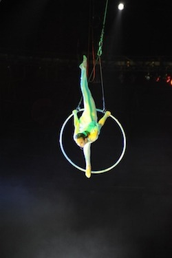 aerial ring act